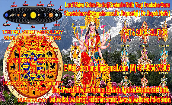 puja homam yajna remedies